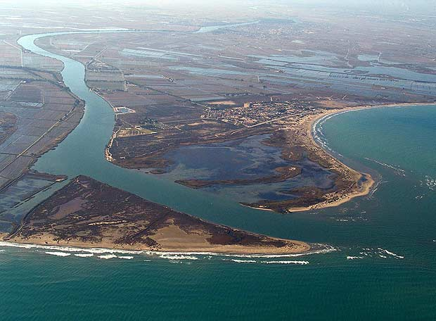 Que ver en el Delta del Ebro