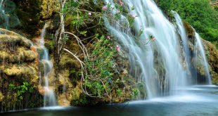El Parque Natural de Chera Sot