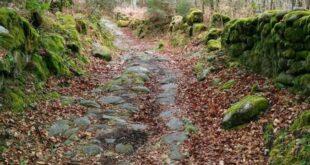 Caminos por San Pedro de Rocas