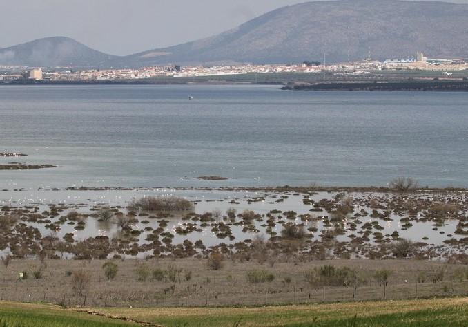 Vista de la Laguna de Fuente la Piedra